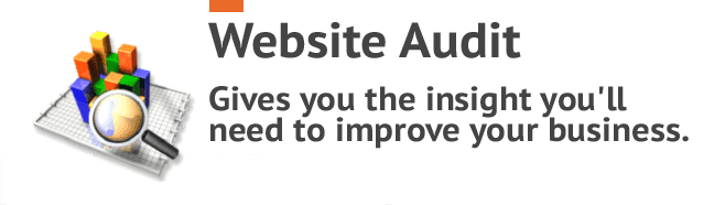 free-website-audits-smartP